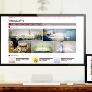 Standard CMS Website