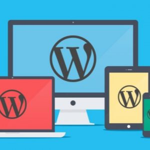 Wordpress Standard Website Plan