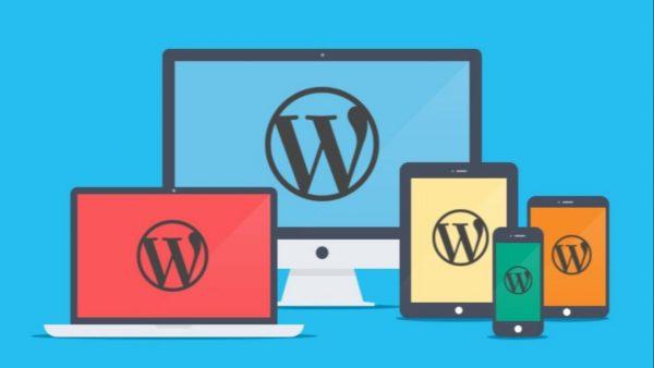Wordpress Standard Website Plan